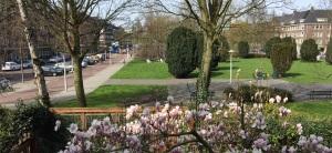 250 huishoudens genieten dagelijks en bij nacht van dit heerlijke stukje open, groene Amsterdam